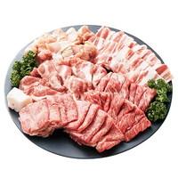 ふるさと納税 牛肉[10,000円]「焼き肉セット1kg(飛騨牛入り) 」